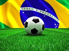 巴西任加是什麽